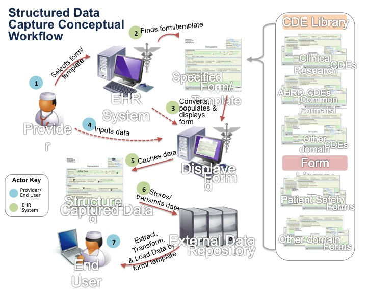 Diagram of Structured Data Conceptual Workflow