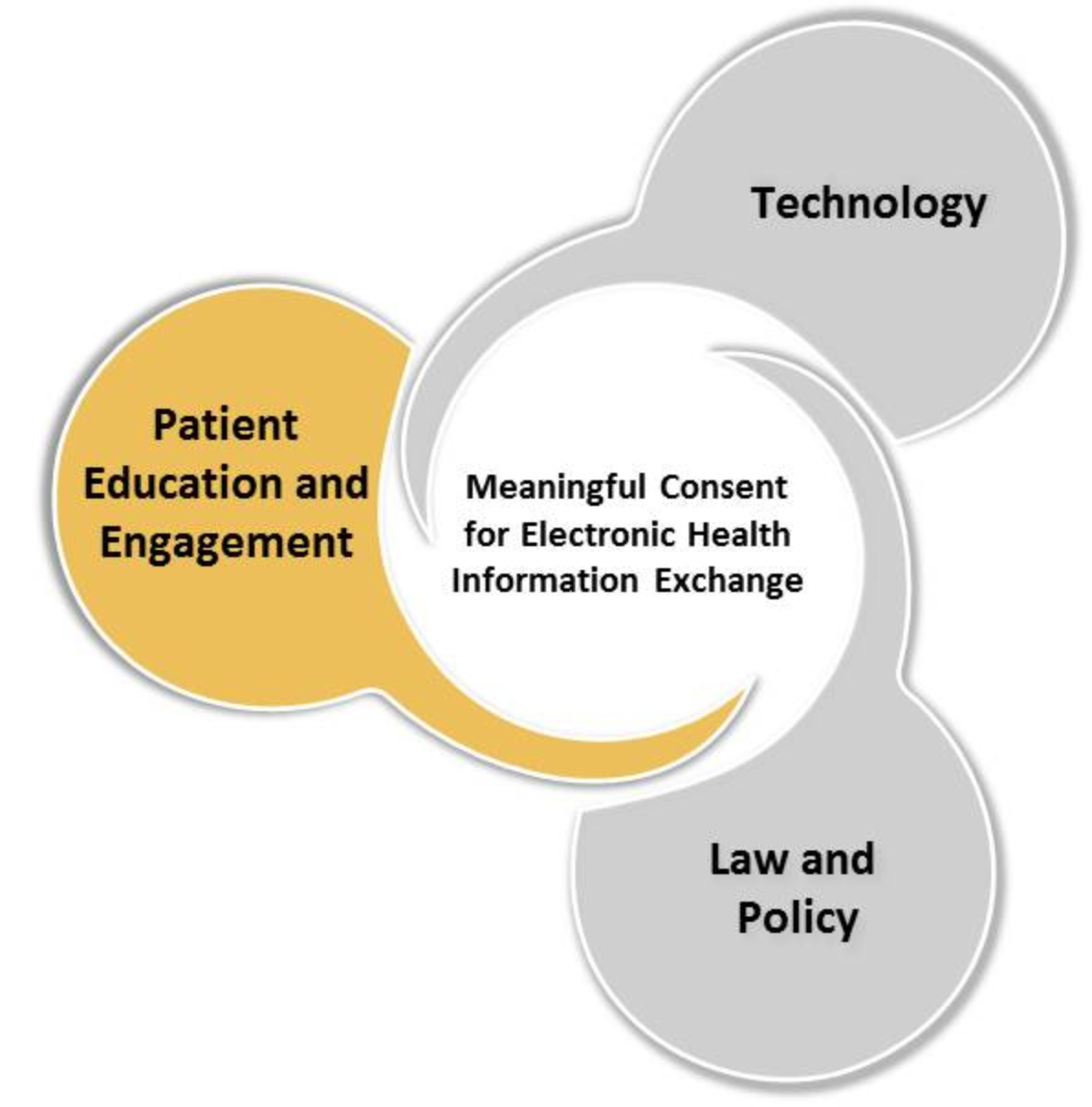 patient education and engagement