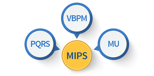 Components of MIPS